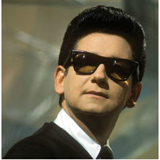 Roy orbison wicked game