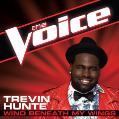 The Voice - Wind Beneath My Wings